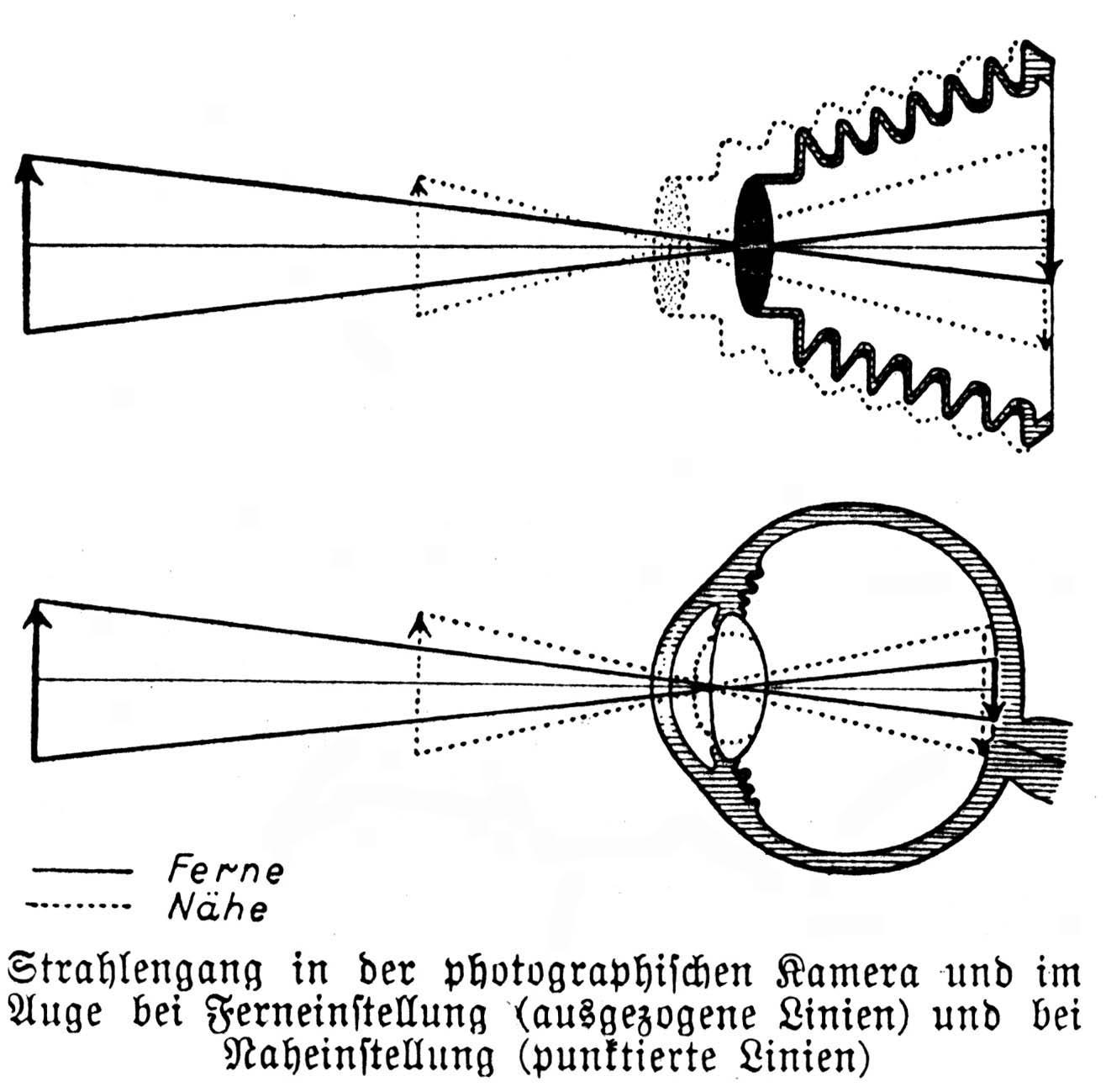 Fein Hüftanatomie Mri Ideen - Anatomie Ideen - finotti.info